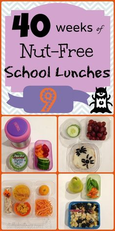 Week 9 of 40 Weeks Nut-Free Kids School Lunches StuffedSuitcase.com kid lunch