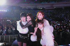 lisa, blackpink, and rose image Kpop Girl Groups, Korean Girl Groups, Kpop Girls, Blackpink Jennie, Yg Entertainment, K Pop, Blackpink Members, Kpop Memes, Black Pink Kpop