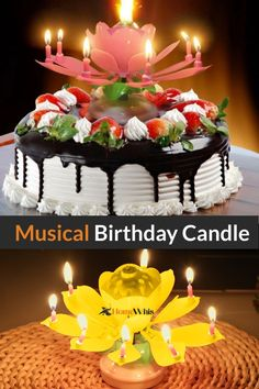 Take your birthday party to the NEXT LEVEL! This amazing birthday candle is unlike anything you've seen, it opens up with the candles spinning while the birthday song is played. Creating a memorable birthday party experience Happy Birthday Wishes Song, Happy Birthday Music, Birthday Wishes For Girlfriend, Happy Birthday Celebration, Happy Birthday Flower, Happy Birthday Signs, Happy Birthday Beautiful, Birthday Wishes Messages, Happy Birthday Candles