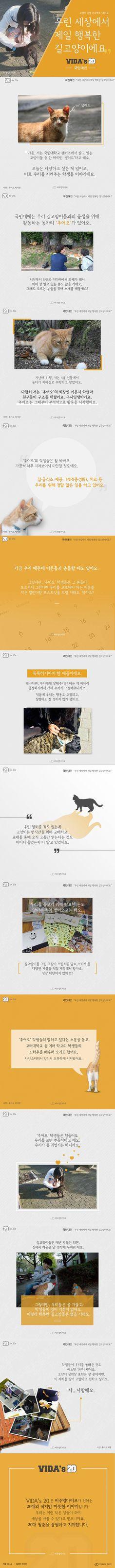"""""""우린 행복한 길고양이"""" 대학생들의 길고양이 공생 프로젝트 '추어오' [카드뉴스] #cat / #cardnews ⓒ 비주얼다이브 무단 복사·전재·재배포 금지"""