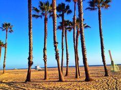 Venice Beach, Califórnia / Foto: Mônica Nunes / Maio 2014