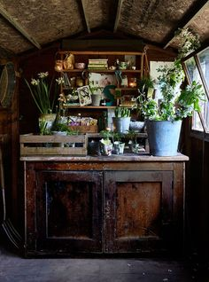 City Gardening 9 rustic and vintage garden styling tips - Bring a pretty rustic feel to your outside space by creating movable displays of vintage gardenalia and flowering plants Rustic Shed, Rustic Decor, Allotment Shed, Allotment Ideas, Garden Shed Interiors, Garden Sheds, Rustic Interiors, Rustic Wood Furniture, Vintage Furniture