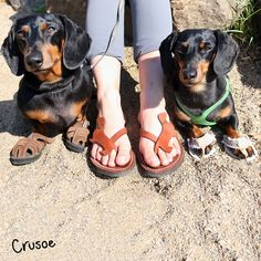 """We're trying to fit in as many 'Sandals Days' as we can before summer's over!""…"