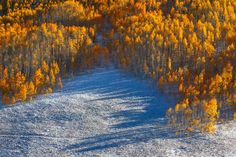 Transitions by Sean Bagshaw on 500px