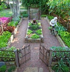 730 Best Beautiful Vegetable Gardens Images In 2020 Vegetable