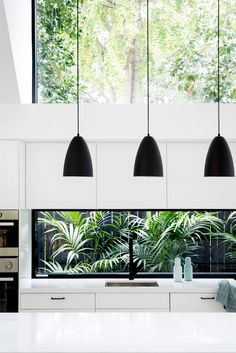 Modern Kitchen Interior A rear extension to a Californian Bungalow in Sydney's North Shore delivers a new light-filled living and kitchen space under a simple shed-like structure.