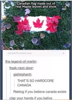 Every time there's a pin about a country of the related pins are from Hetalia Hetalia, Tumblr Stuff, Funny Tumblr Posts, Funny Memes, Hilarious, Silly Jokes, All Nature, The Funny, Just In Case