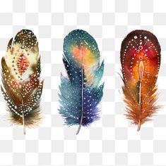 Fancy feathers