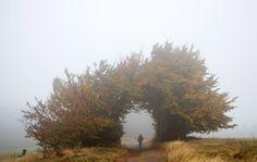 Un escursionista lungo il Rennsteig, il sentiero a lunga distanza più antico della Germania. (Michael Reichel, Afp)