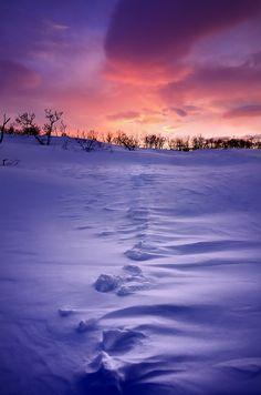 winter sunset (by John A.Hemmingsen)༻神*ŦƶȠ*神༺