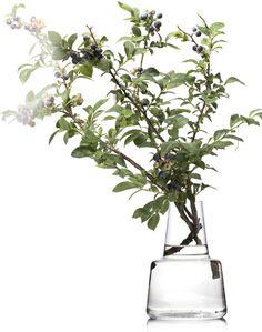 花と花瓶 | scope