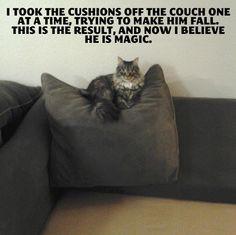 i now believe he is magic