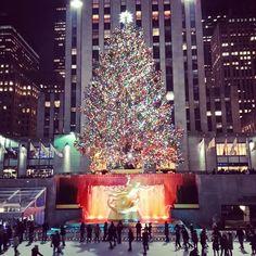 Rockefeller Christmas Tree.