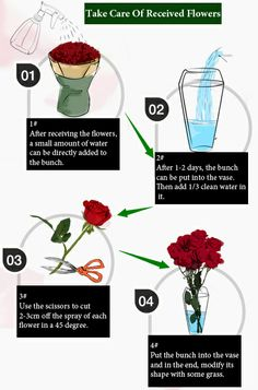 How To Take Care of Received Flowers