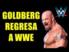 WR 3D: Karl Anderson vs. Bill Goldberg (WWE Hell in a Cell 2016) - YouTube