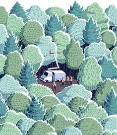 "Jon McNaught: New York Times Book Review Cover -- ""Re-Imagining the Wild"""