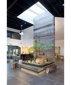 Succulents line the box containing a sky-lit tree fern that acts as a centerpiece to the gallery space in Monkey Forest Road. From California Home Design's feature. Architects: Larson Shore Landscape Design: David Thorne Landscape Architecture