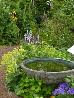 Water feature in garden - DIY Garten Landschaftsbau Back Gardens, Small Gardens, Outdoor Gardens, Small Backyard Gardens, Indoor Garden, Modern Landscaping, Backyard Landscaping, Backyard Ideas, Tropical Backyard