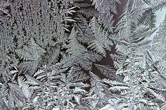 Frost on window. . .
