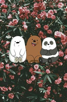 Creo que tengo una obsesión con escandalosos/we bare bears Pink Wallpaper Ios, Cute Panda Wallpaper, Cartoon Wallpaper Iphone, Disney Phone Wallpaper, Bear Wallpaper, Kawaii Wallpaper, Cute Wallpaper Backgrounds, Aesthetic Iphone Wallpaper, Aztec Wallpaper