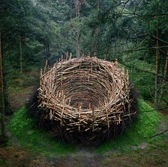 Bavarian artist Nils-Udo creates site-specific works from natural materials. Reminds me a bit of Andy Goldsworthy. Andy Goldsworthy, Land Art, Sculpture Art, Garden Sculpture, Metal Sculptures, Abstract Sculpture, Bronze Sculpture, Art Environnemental, Art Et Nature