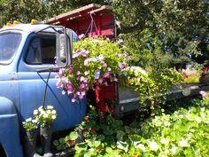 Repurposed hay truck