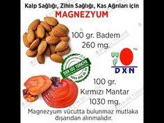 dxn türkiye - www.ganodermaturkiye.com - 0850 808 26 76