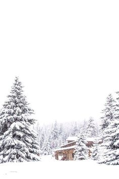 I want to spend untold hours in this cabin making love and sleeping with you in the silence of the snowfall...