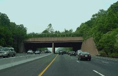 Interstate 78 (New Jersey) -  	 This 2002 photo shows one of the wildlife overpasses along I-78 through the Watchung Reservation in Union County. (Photo by Jim K. Georges.)