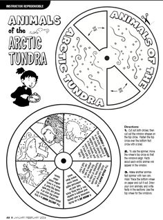 Arctic wheel