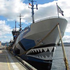 Sea Shepherd ship Bob Barker conducts citizen& arrest on Nigerian fishing boat in Southern Ocean - ABC News (Australian Broadcasting Corporation) Sea . Sea Shepherd, War Machine, Tasmania, Capital City, Fishing Boats, Whale, Bob, Military, Ocean