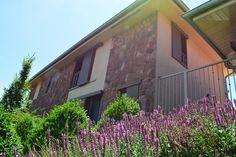 Entrance Doors, Garage Doors, Shading Device, Big Windows, The Neighbourhood, Most Beautiful, Wood, Outdoor Decor, Plants