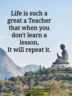 Life is a teacher.
