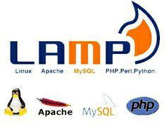 One of the most innovative open source web development platform is LAMP, that uses Linux for its host OS, Apache as the web server, MySQL for database functions and PHP for scripting purposes. You can hire LAMP developer proficient in these technical domains to create business specific applications that can be sent to your clients and customers. Our expert team of developers can help you choose your key objectives and create applications to support the core functions of your business.