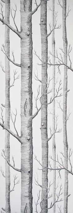 2 m Cole and Son Wallpaper Woods Black on White TWO by romolly