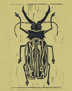 Colombian staghorn beetle / Macrodontia cervicornis - linocut print 2011- Christine Moser, U.S.A.
