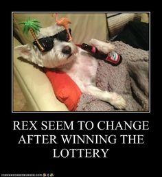 Rex lottery winner..