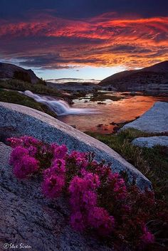 ❖ Eastern Sierras, Lake Sunrise