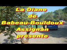 diane de Babeau-Bouldoux présente ouverture de la chasse au sanglier 15 ...
