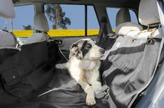 Lyzzo Extra Strong Dog Hammock Seat Cover - Waterproof, 100% Satisfaction Guarantee >>> Click on the image for additional details.