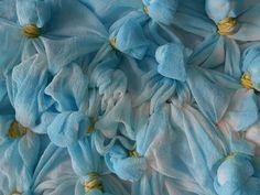 silk dyeing process