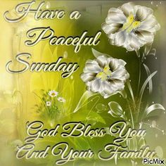 Have A Peaceful Sunday