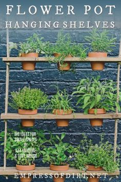 a1f1370526b36 How to Make Flower Pot Hanging Shelves. Hanging PotsHanging Herb GardensVertical  ...