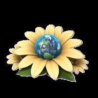 oCity Network - social networking Ci sono due scelte fondamentali nella vita: accettare le condizioni persistenti ...o accettare la responsabilità di cambiare... I SEE... www.olvacomm.com login trovi CityMall