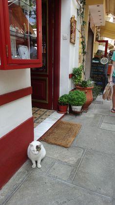 Kitty Skopelos Town