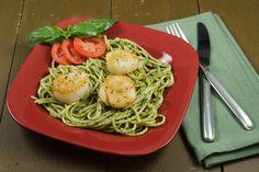 seared scallops with linguine pesto