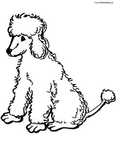 Poodle Coloring Page Poodle Dog and Dog pattern