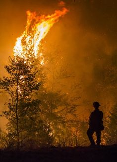 Pollock Pines, Bureau Of Indian Affairs, El Dorado County, Wildland Firefighter, Bureau Of Land Management, California Wildfires, Forest Service, Vacation Pictures, West Coast