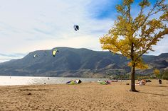 Check out our list of ten of the best beaches in the Okanagan including Skaha Beach in Penticton, Kal Beach in Vernon, and Hot Sands Beach in Kelowna. Vernon, Sands, Family Travel, Beaches, June, Hiking, Good Things, Mountains, Bergen