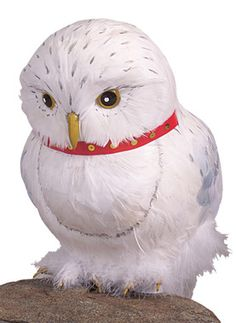The perfect prop to go along with your Harry Potter costume. White spotted owl with red band around neck. Made with real feathers.